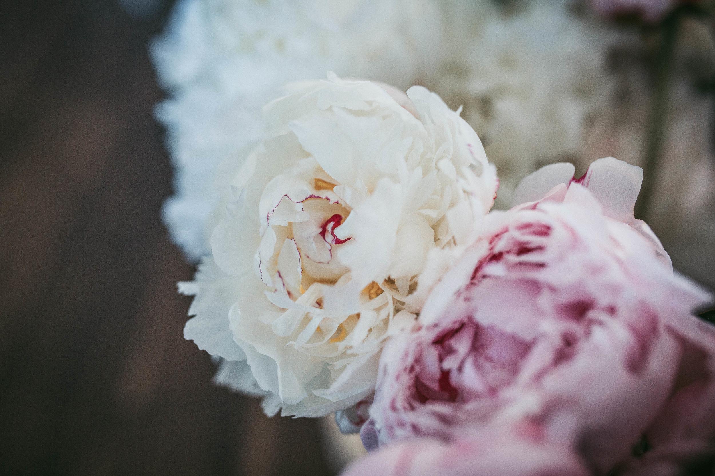 La Beau Fleurs (58).jpg