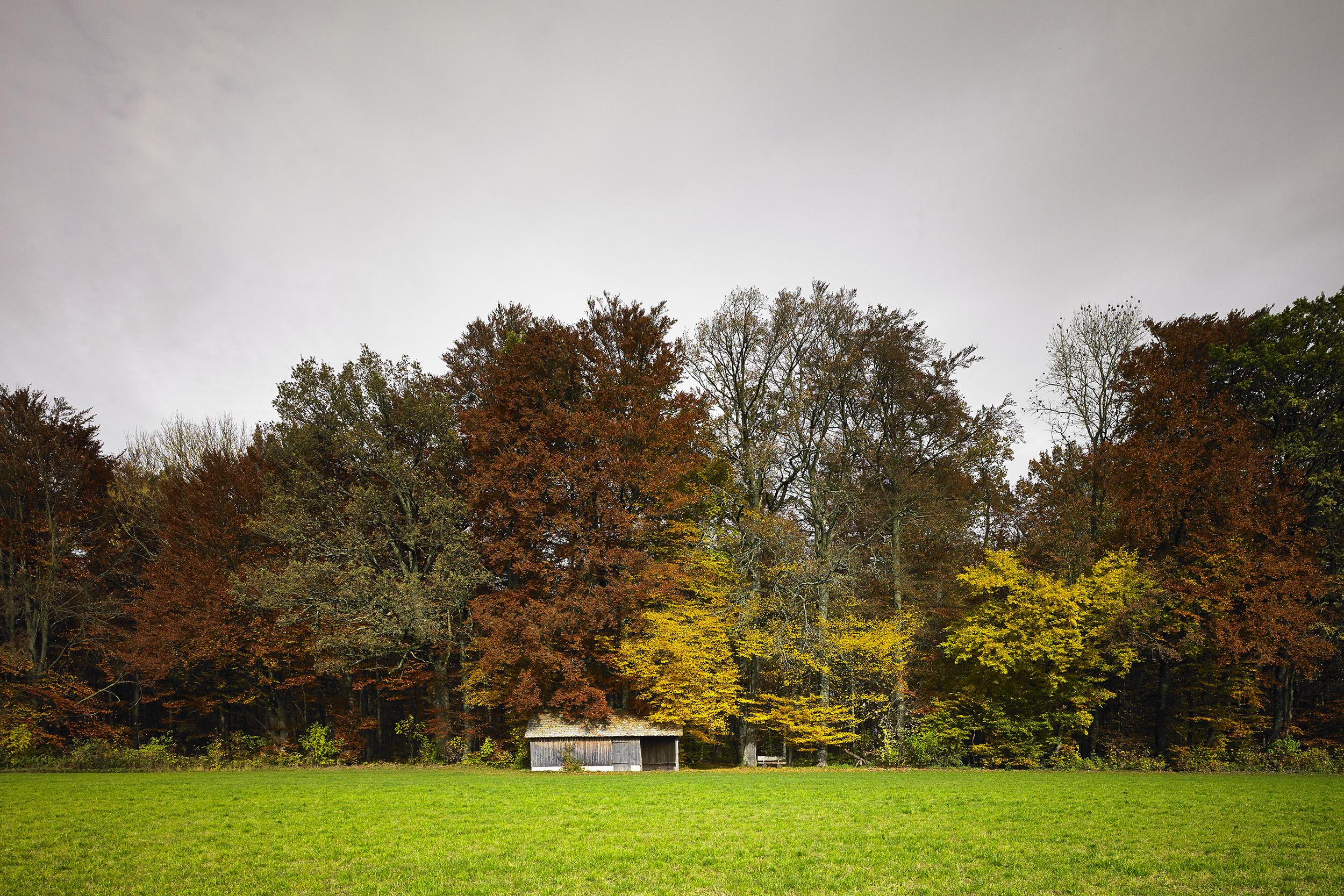 Herbst - Landschaftsfotografie