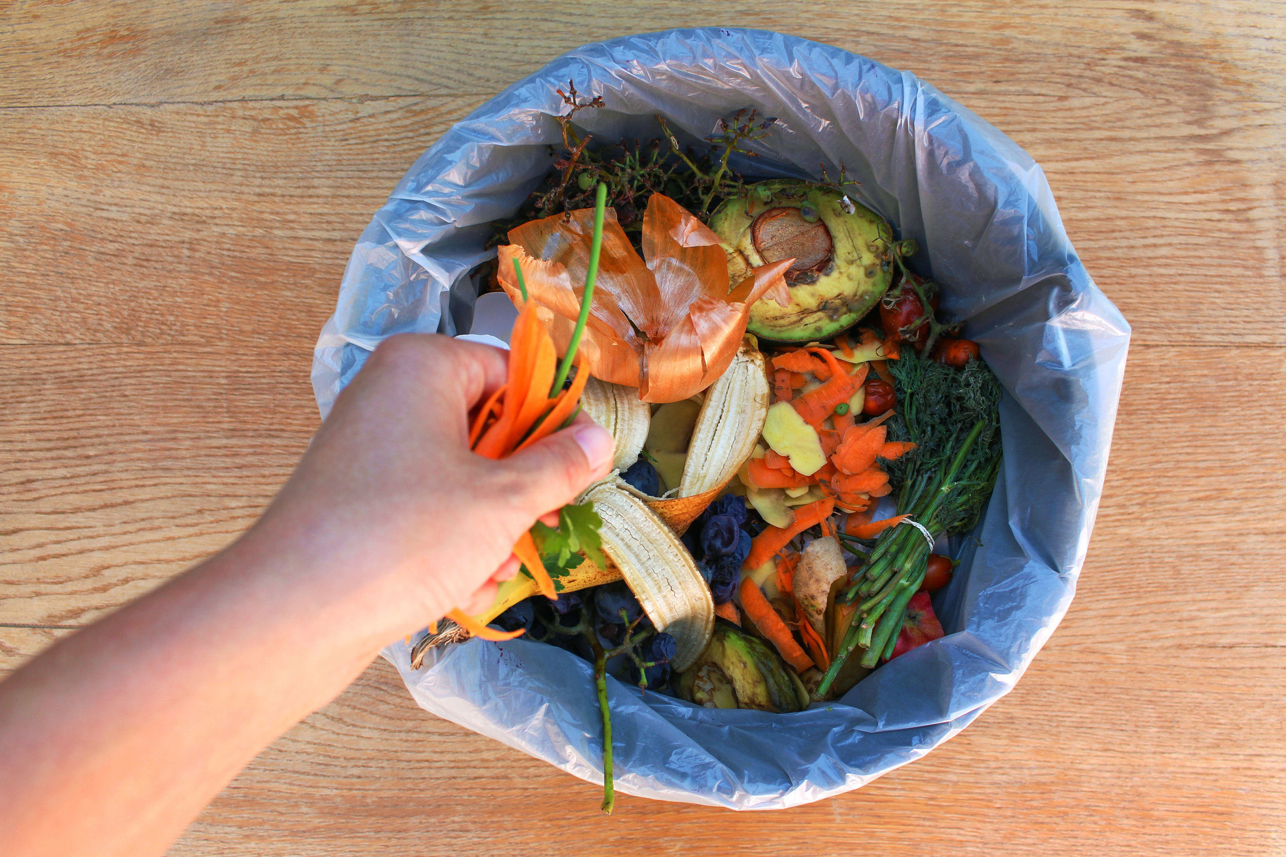 One Food Waste.jpg