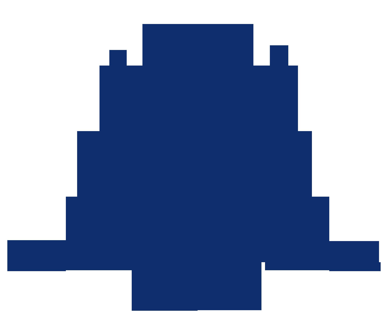 RMH_Logo_Navy.png