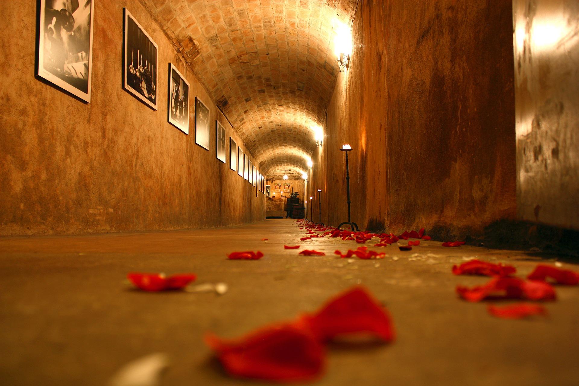 cellar-1228659_1920.jpg