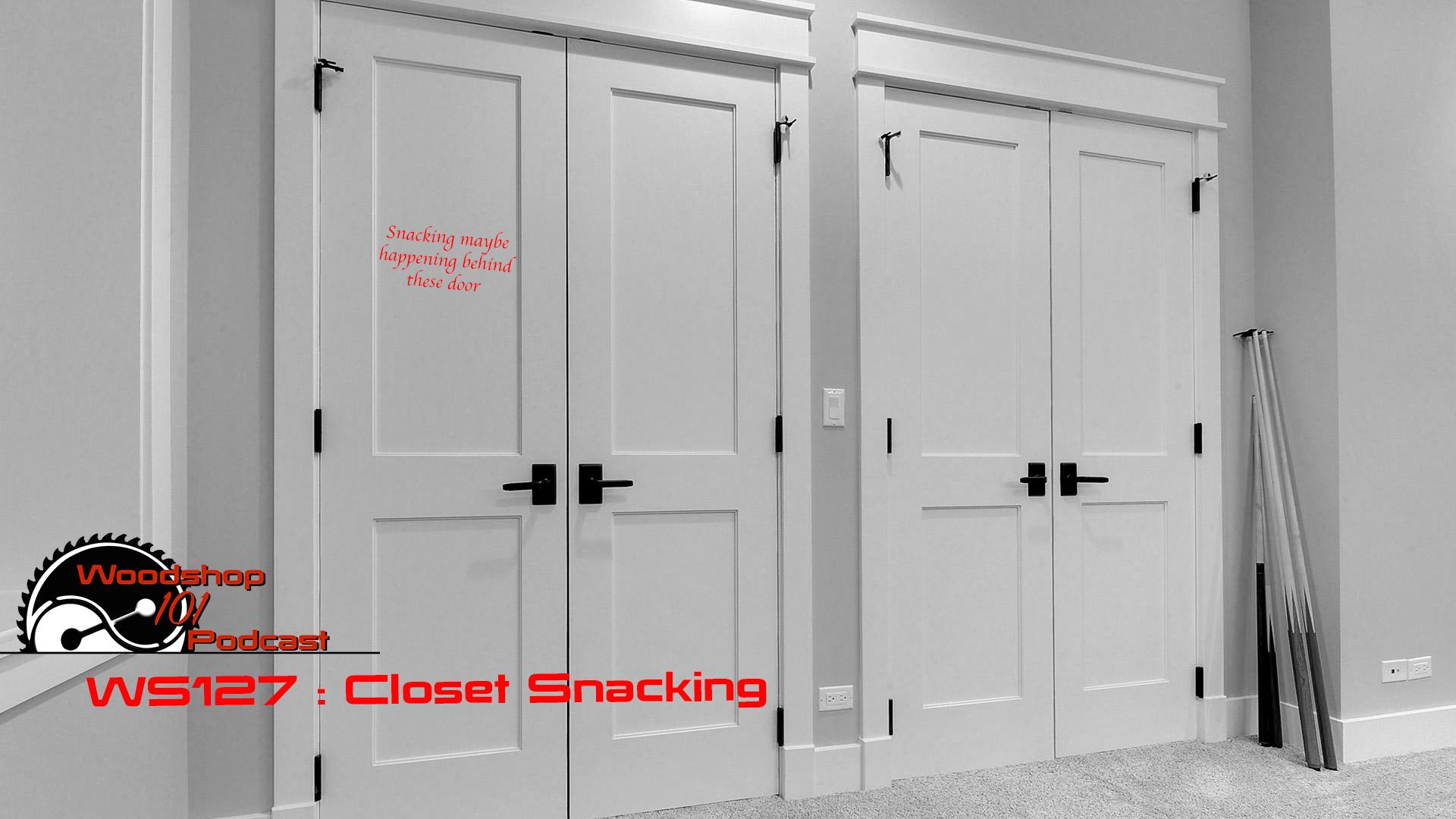 Alternatives Bifold Closet Doors Alternatives Bifold Closet Door