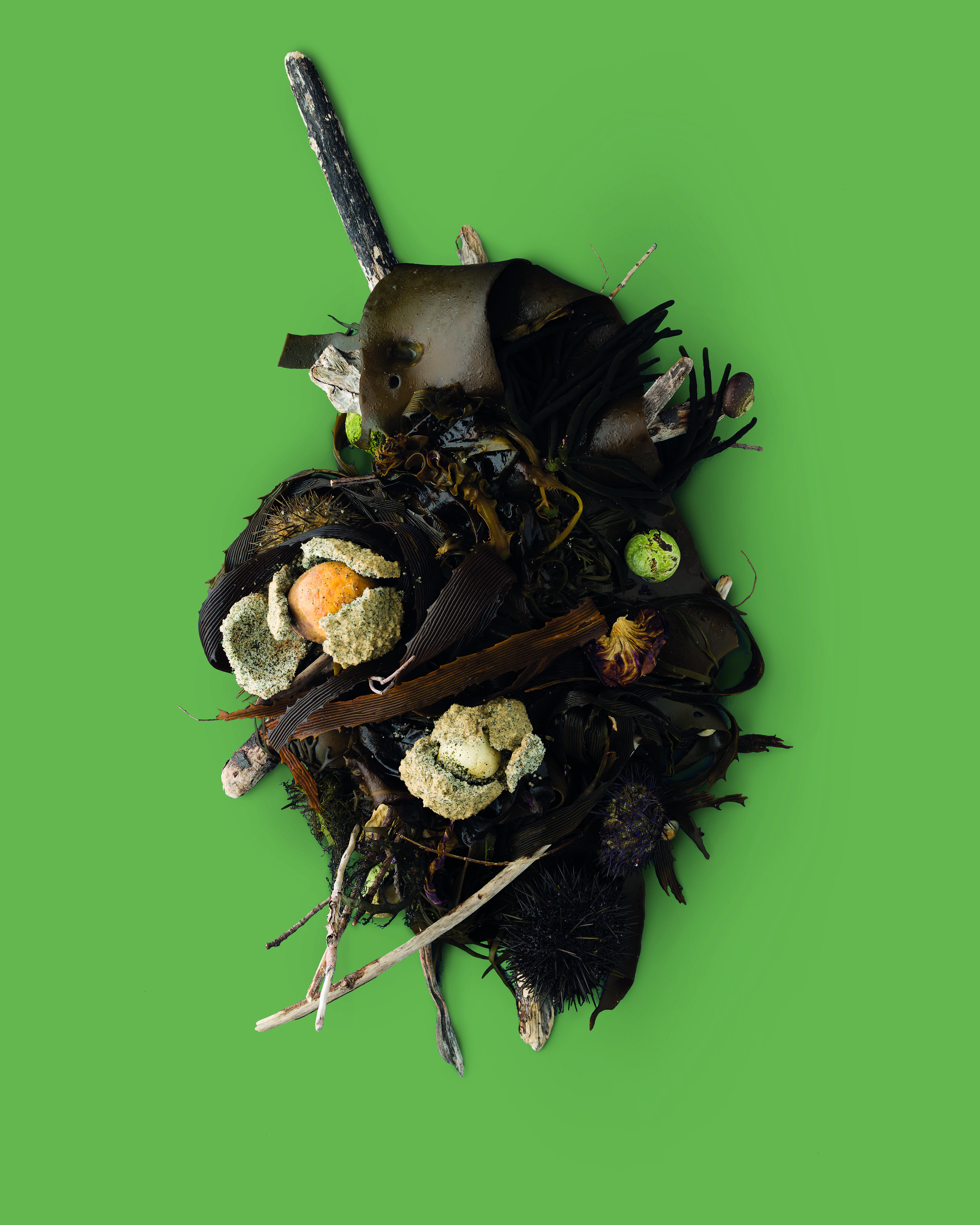 Seaweed salt-baked root vegetables by Dominique Crenn from Eat the Problem by Kirsha Kaechele (Mona, $277.77, mona.net.au). Photo credit Mitch Osborne(1).jpg