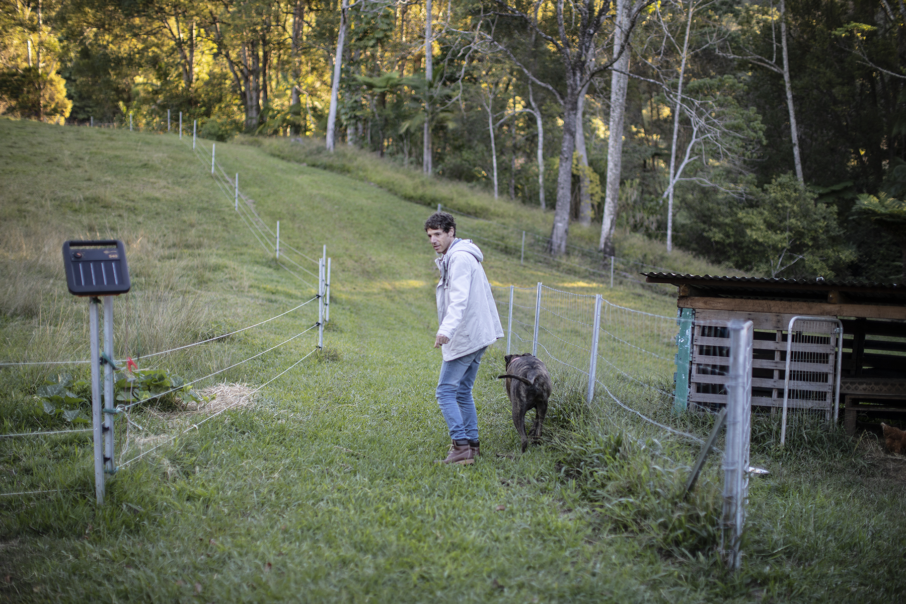 Edo at home at Bodhi Glow Farm Sanctuary in the Byron hinterland