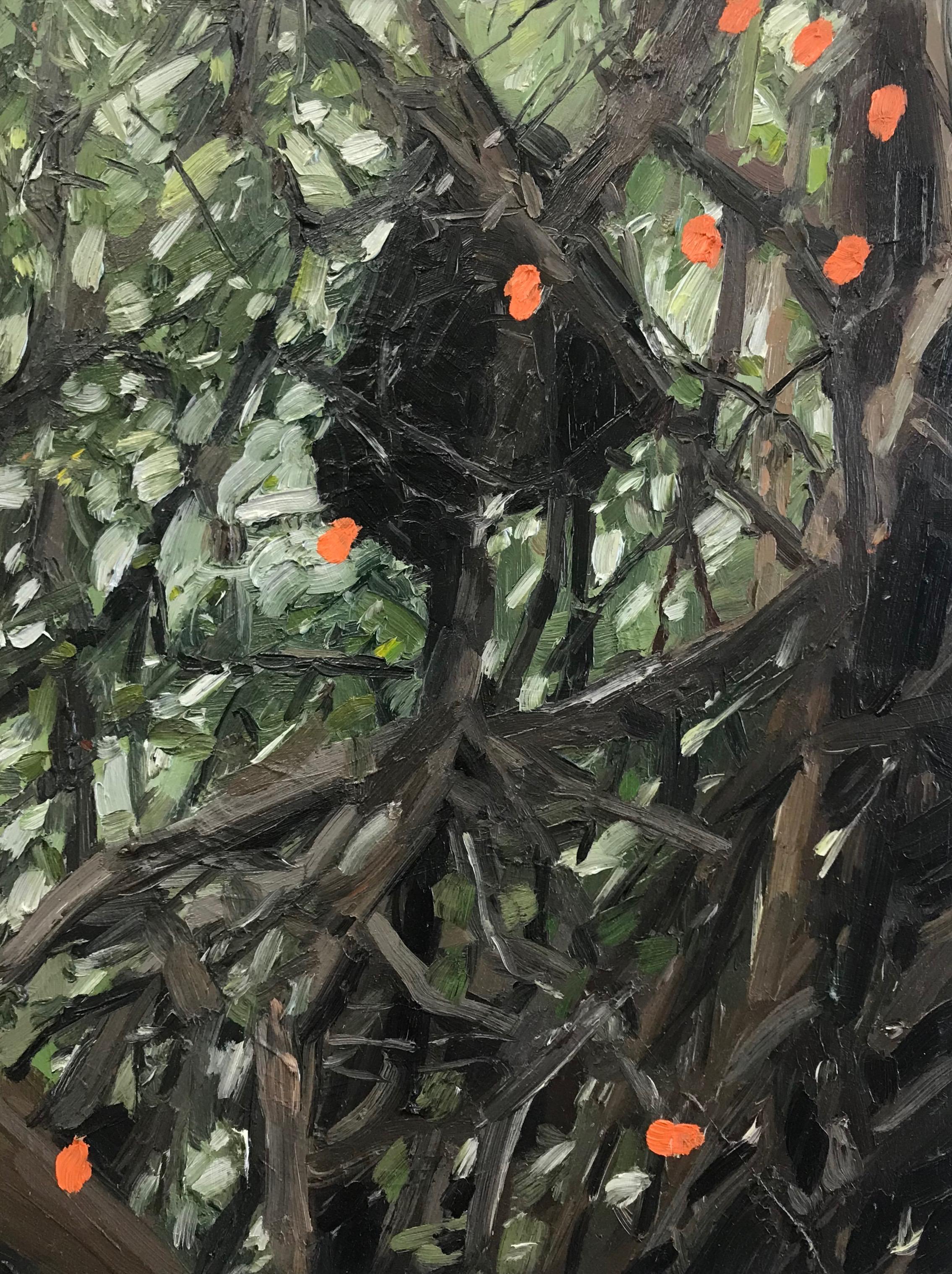 Mangroves 2, Oil on Board