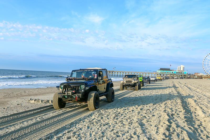 beachcrawl8.jpg