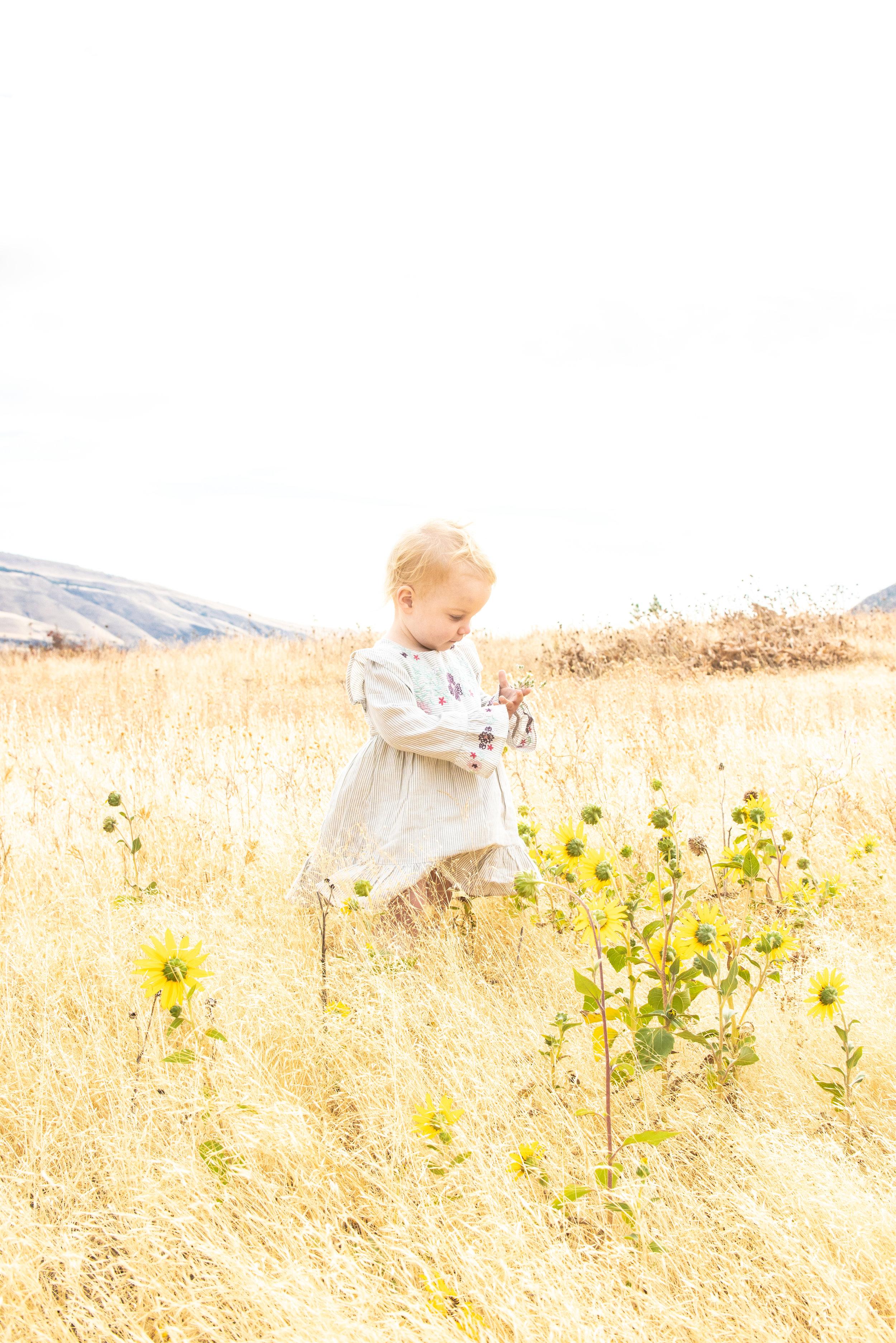 Dreamy Fall Family Photoshoot 18.jpg