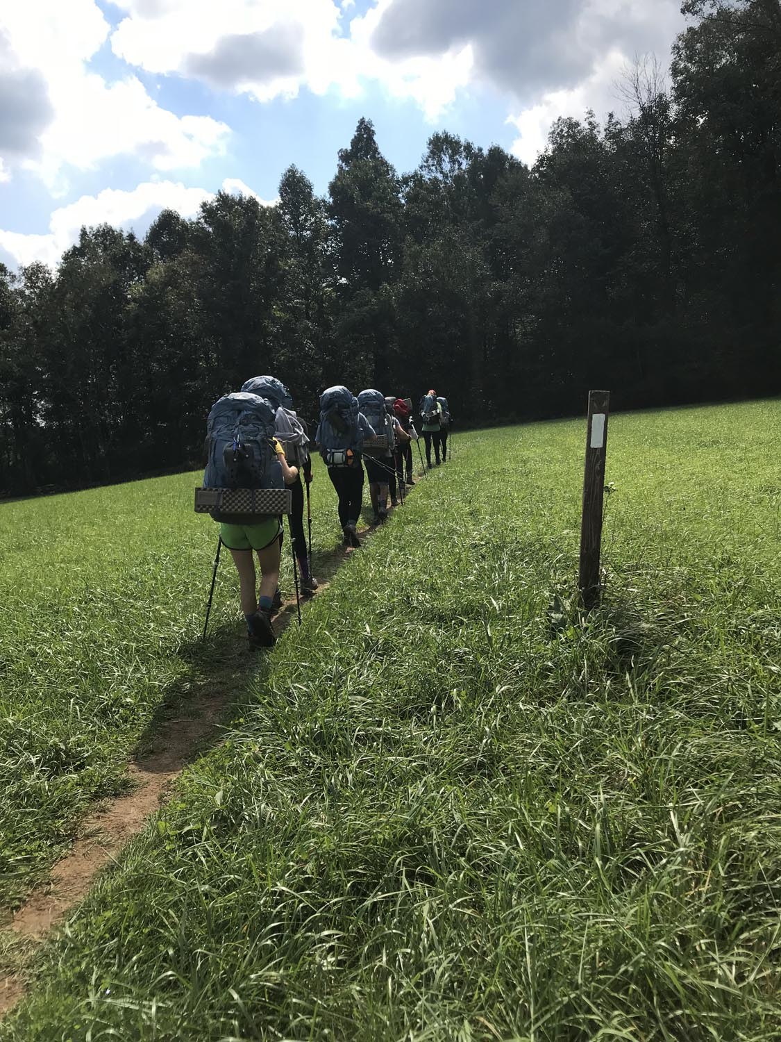 The AT blazes keep hikers on track. It's amazing to hike through forests and into open pastures. On this particular trek, we encountered a herd of Longhorn cattle.