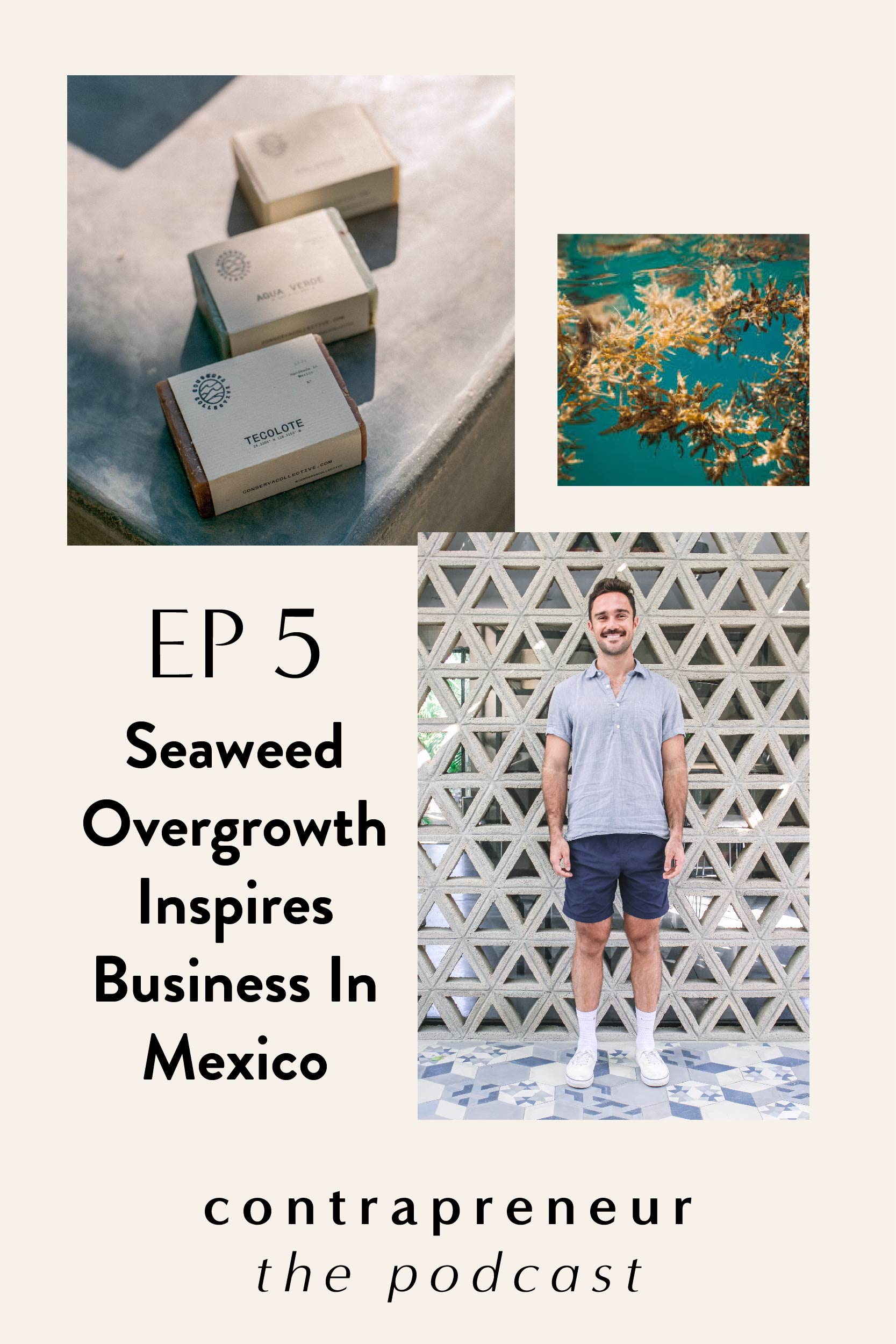 Seaweed Overgrowth In Mexico Inspires Business — Contrapreneur The Podcast