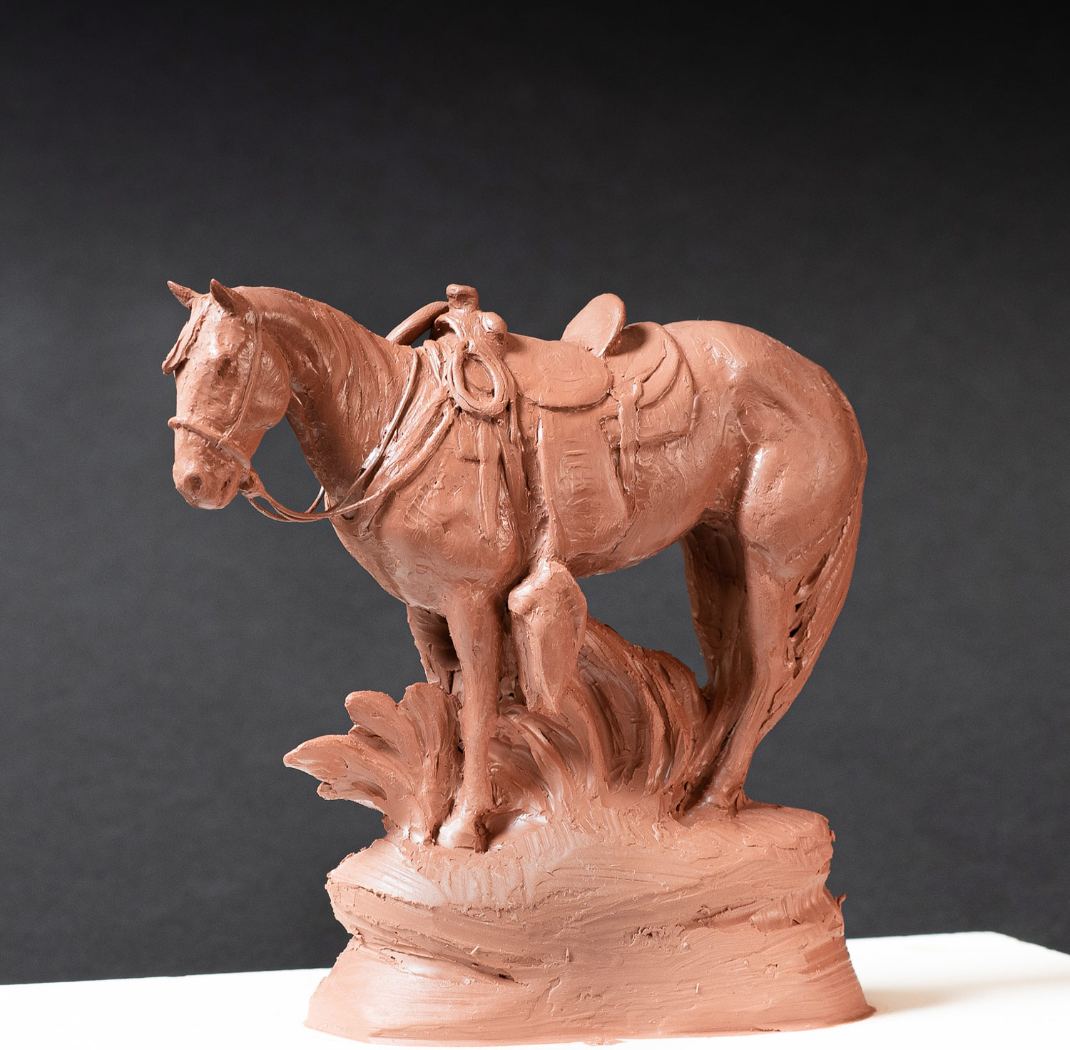 Pride of the Cavvietta will be available during the CAA Cowboy Trails Show online