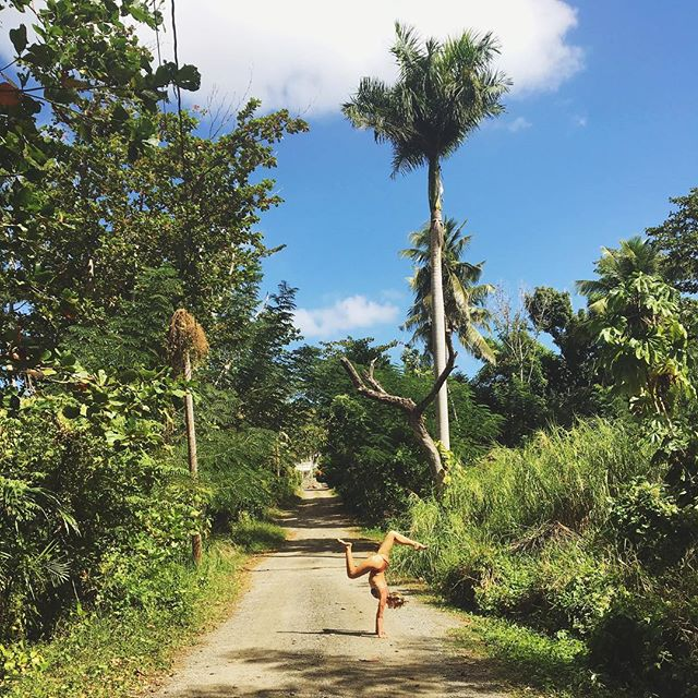Slow down, reset, and experience the natural, healing beauty of Puerto Rico 🌞🌴 EARLY-BIRD SPECIALS are still available for the first Buena Vida Wellness & Yoga Retreat that's taking place here in Rincón, Puerto Rico on May 22-26 🇵🇷 5 days & 4 nights of daily yoga, meditation, insightful workshops, local food and quality time with nature. Kick-start your summer of self-love with us 💕 Sign up on or before February 15th and receive $200 OFF any of the Retreat packages. Questions?? Feel free to reach out 🙏✨We hope to meet you in Rincón!! . . . 📷 #repost by one of our Retreat leaders @sunburntandsalty 🌊  #buenavidaretreats #yogaretreat #wellnessretreat #rinconpuertorico #caribbeanyogaretreat #puertoricoyogaretreat #estaeslabuenavida #thisisthegoodlife #yogateacher #yogastudent #travel #meditation #journaling #insightfulworkshops #localfood #naturehealing #islandliving #yogisofinstagram #igyogacommunity #tropicaltravel #yogaforeverybody #prlovesyoga #prlohacemejor #visitrinconpr