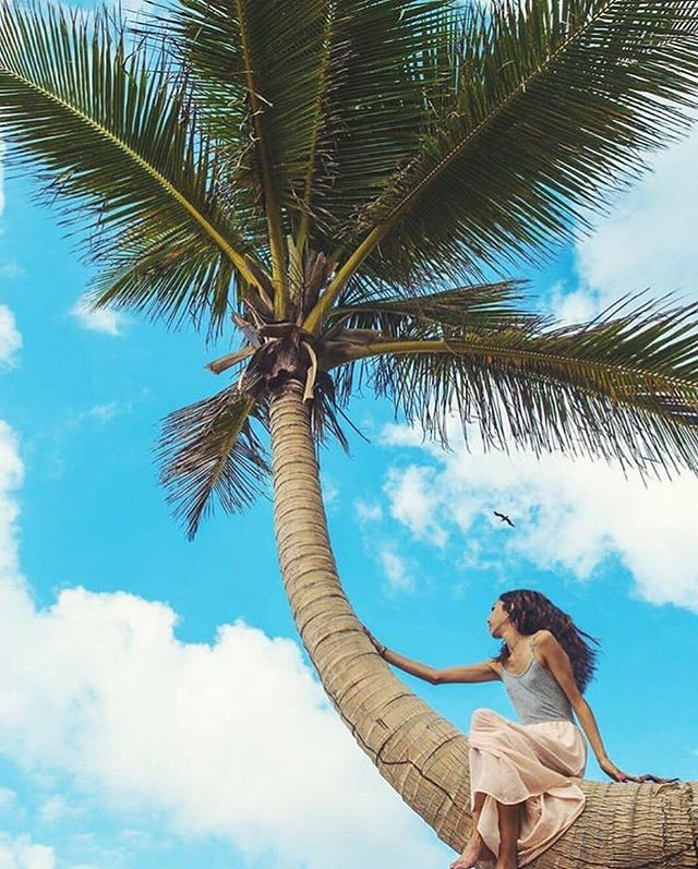 #Repost x @paloma_coaching 🌴 Paloma will be offering a Personal Discovery & Intro to Life Coaching Workshop during the May Retreat • New to life coaching?? According to Paloma, the essence of coaching is helping a person to realize their full potential - it's about guiding a person on their life journey & putting them on their path to greatness 🦋🌿 Sign up for our May Wellness Retreat in Rincón, PR by clicking on the link in our bio 💕 . . .  #yogaretreat #rinconpuertorico #wellnessretreat #buenavidaretreats #estaeslabuenavida #lifecoach #lifecoaching #uncoveryourpathtogreatness #selfcare #selflove #summerofselflove #thisisthegoodlife #visitrinconpr #prlovesyoga #prlohacemejor