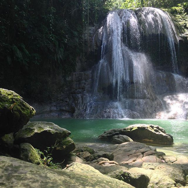 Nature heals 🌱 Not only will you get to experience 5 days of oceanfront living with options for beach walks, snorkeling, surfing or paddleboarding... But we will also take a day-trip to the mountains for a little nature-therapy in the form of local waterfalls and gentle hikes // Join us in Rincón, Puerto Rico this May 22-26 for the Buena Vida Wellness & Yoga Retreat with Cait Lawson @sunburntandsalty & Malorie Tillero @malorietillero 💚✨ Spaces still available. Click the link in our bio to learn more! . . .  #natureheals #yogaretreat #wellnessretreat #rinconpr #buenavidaretreats #caribbeanyogaretreat #oceantherapy #hiking #chasingwaterfalls #adventures #meditation #wellness #travel #newexperiences #summerofselflove #visitrinconpr #villaplayamaria #prlovesyoga #prlohacemejor