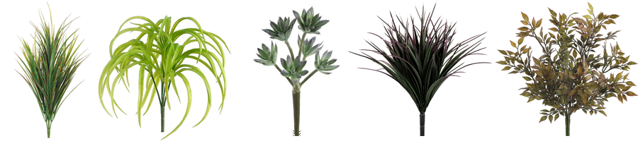 fw-plants.png