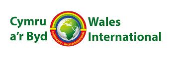 Wales International image