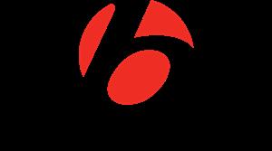 bontrager-logo-6224BE0924-seeklogo.com.png