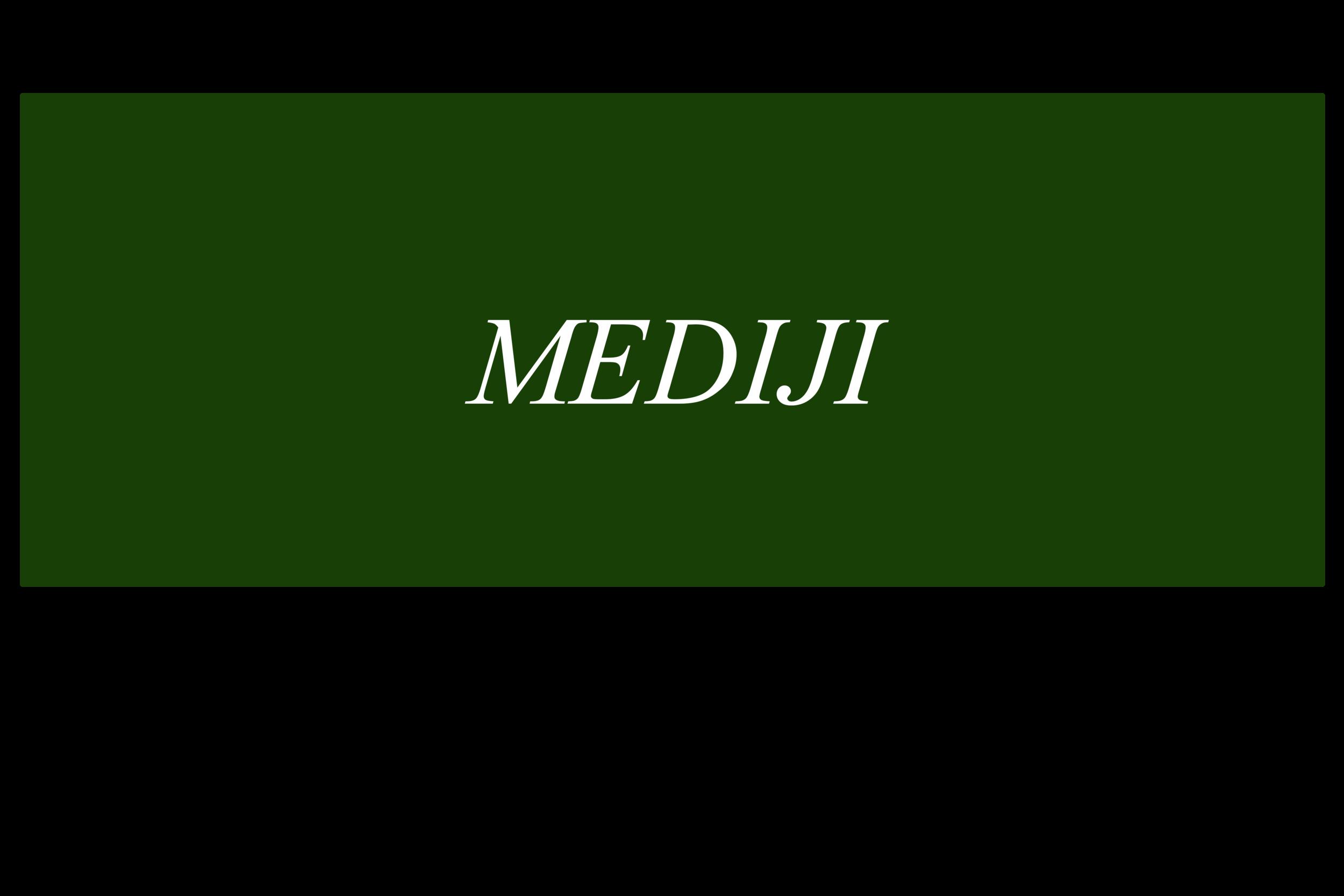 MEDIJI.png XL.png