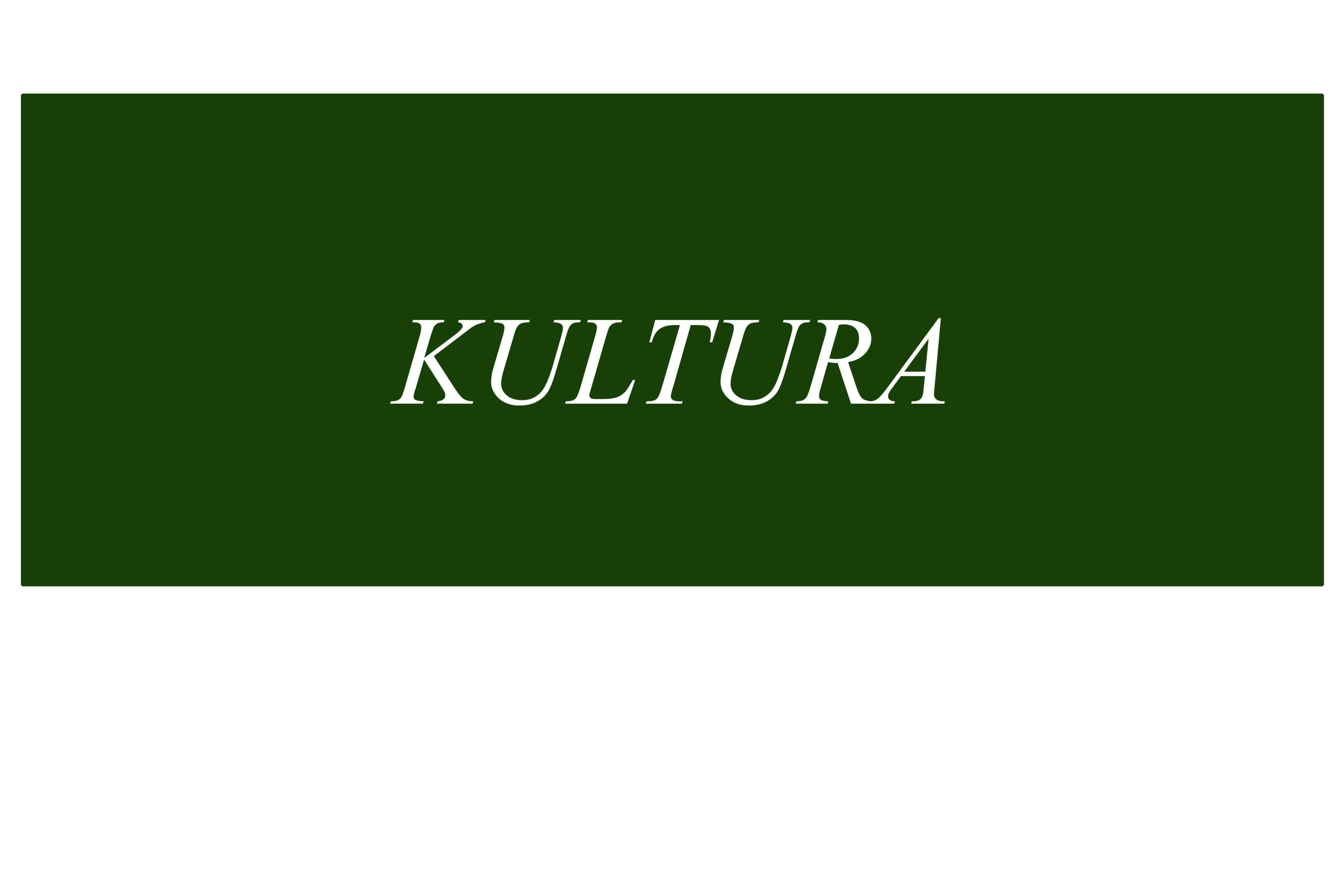 KULTURA XL.png