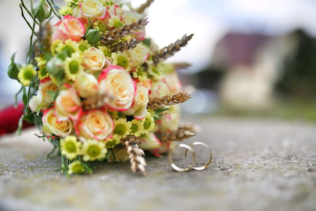 Poročna prstana (foto: Maksimilijan Krautič)