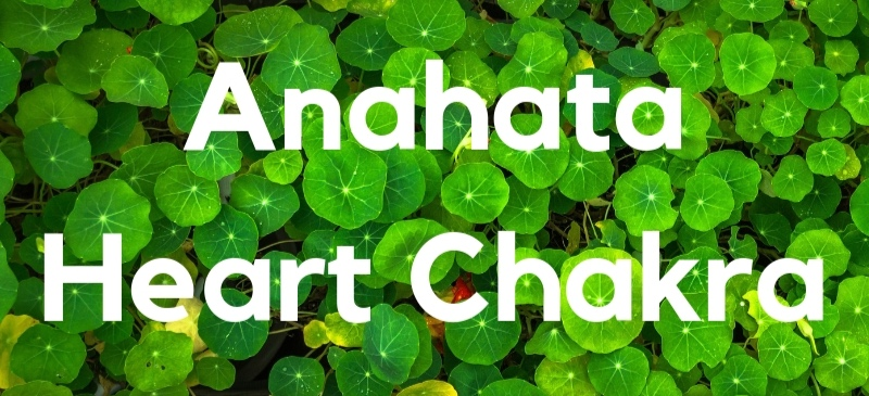 Yoga Asana for the Root Chakra-4.jpg