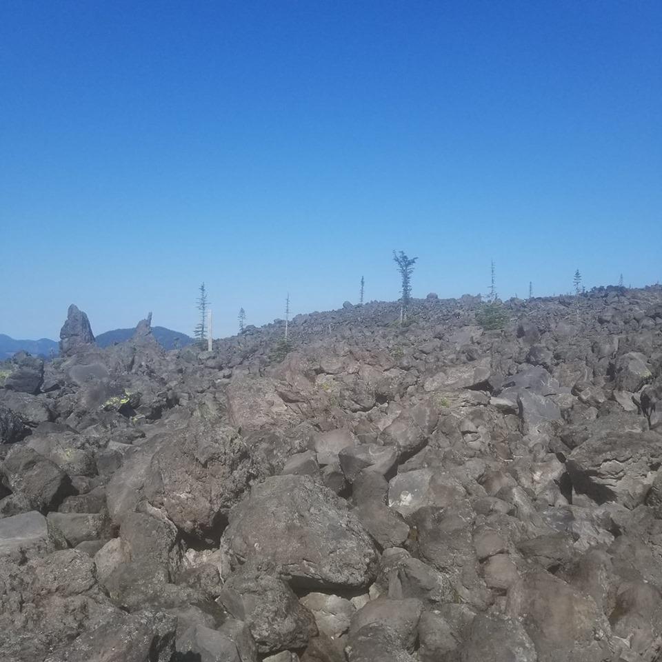 Lava Boulder Fields of Mt. St. Helen's. Photo Credit: Wendy Foster