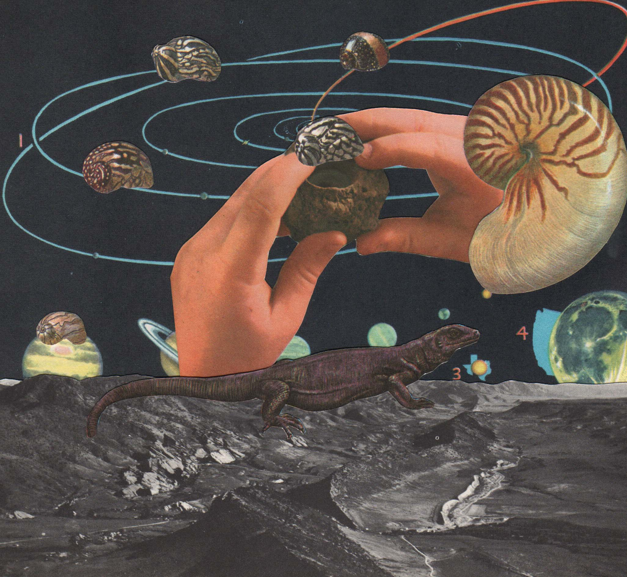 Space Snails