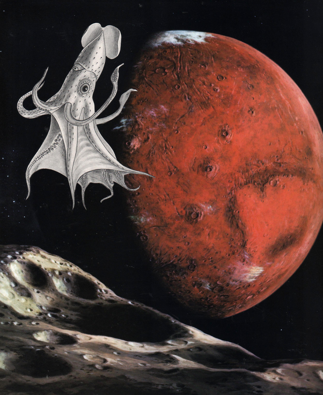 Marauders of Mars