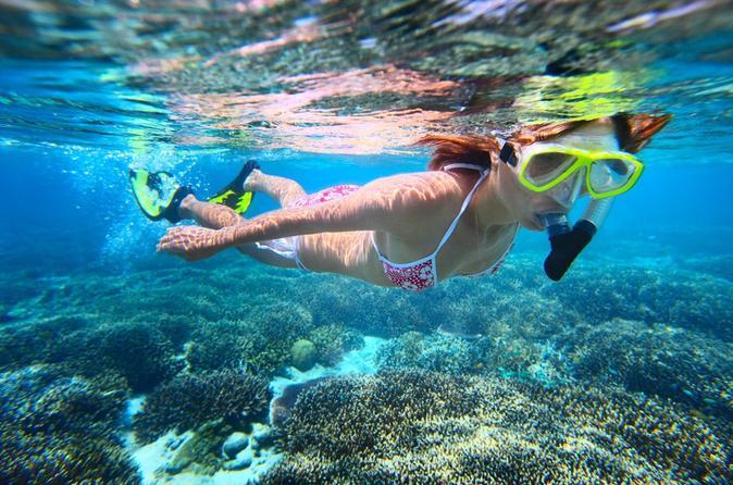 st-maarten-sailing-and-snorkeling-tour-tintamarre-island-creole-rock-in-st-maarten-120756.jpg
