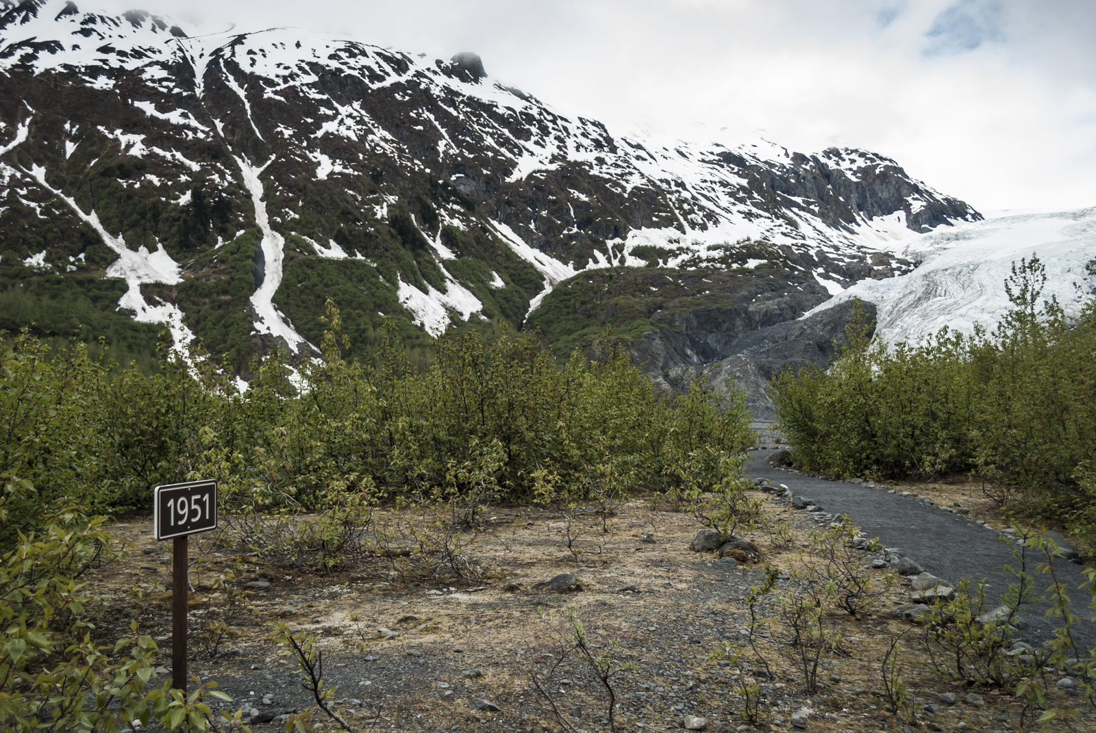 This trail leads to the viewing area and the toe of Exit Glacier. The marker in the image denotes the location of the glacier in 1951, illustrating how far Exit Glacier has receded since then.