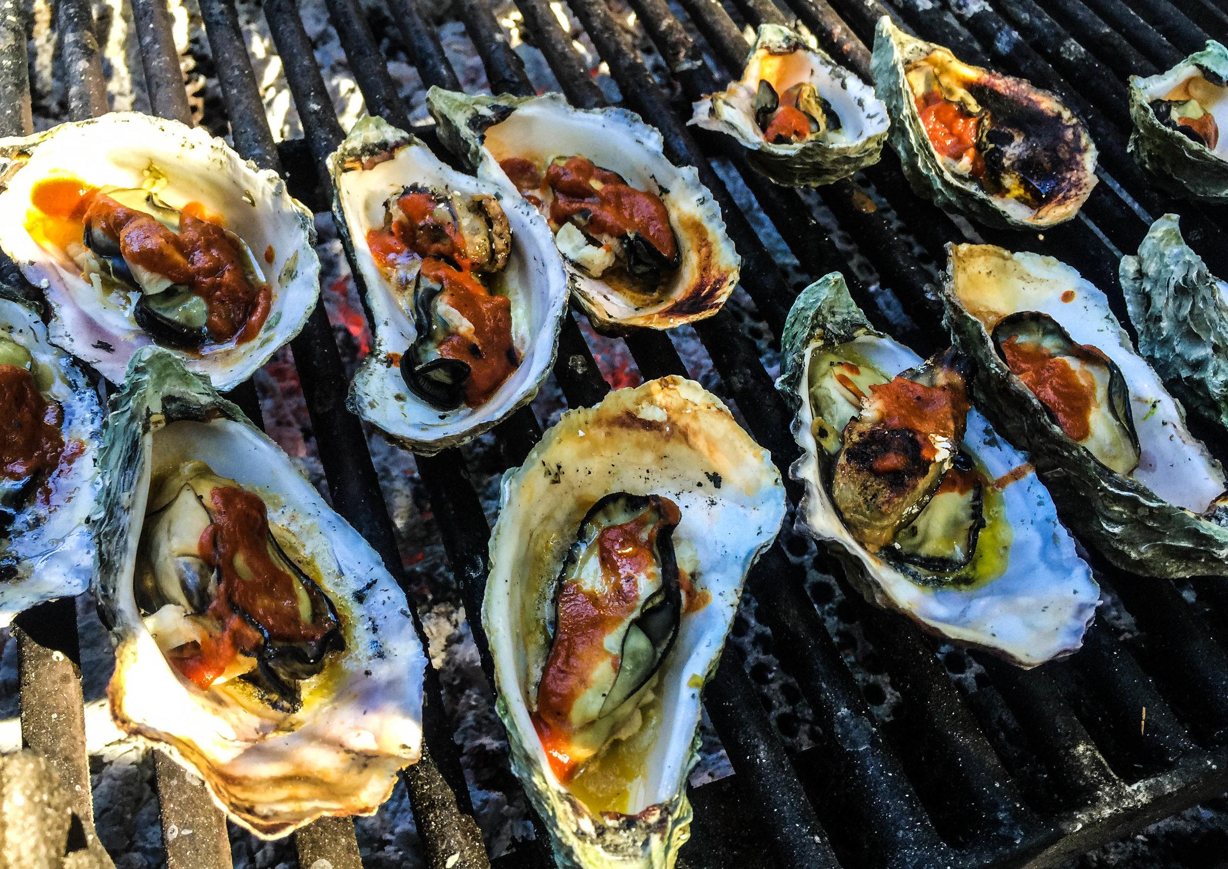 Oysters - Hog Island