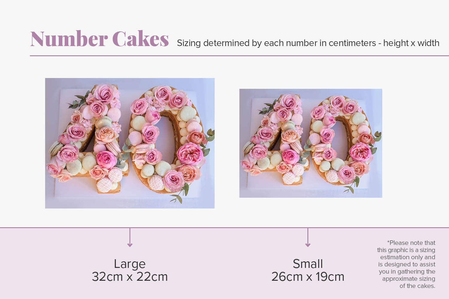 Cakes_By_Aranee_Perth_Customised_Number_Cake_Cake_Sizes_Chart.jpg