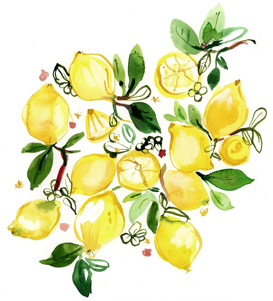 Jennifer_OrkinLewis_PP_lemonfruit.jpg