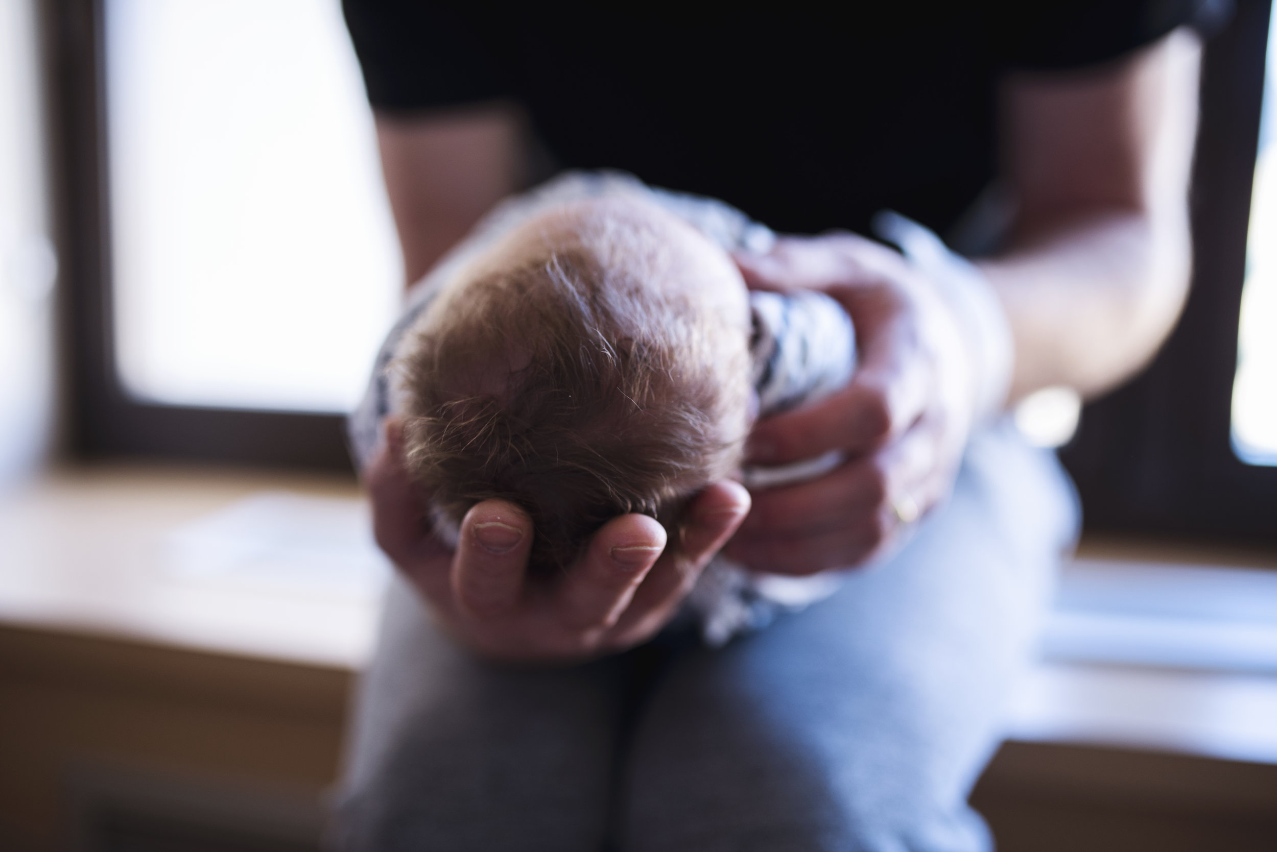 Seattle Newborn photographer baby's head held in dad's hands