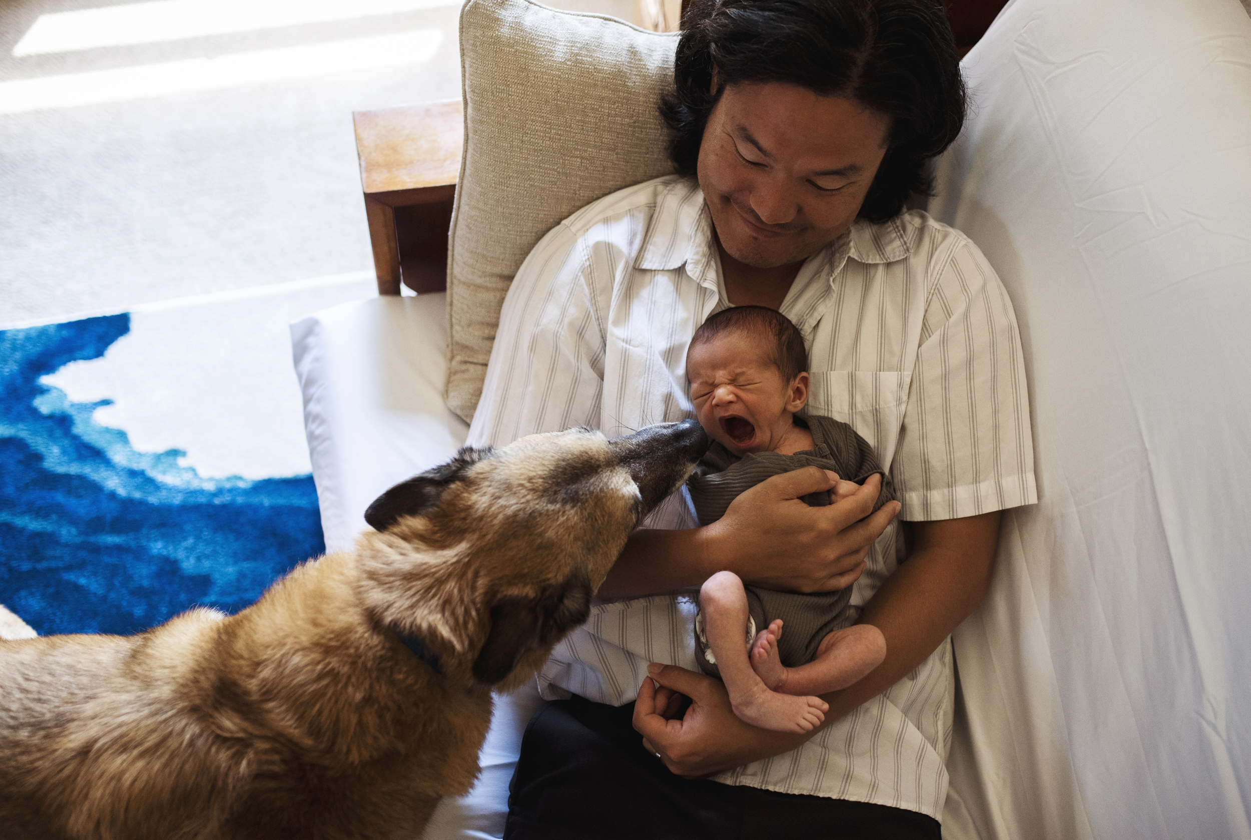 Edmonds family photographer baby is yawning while dog watches on