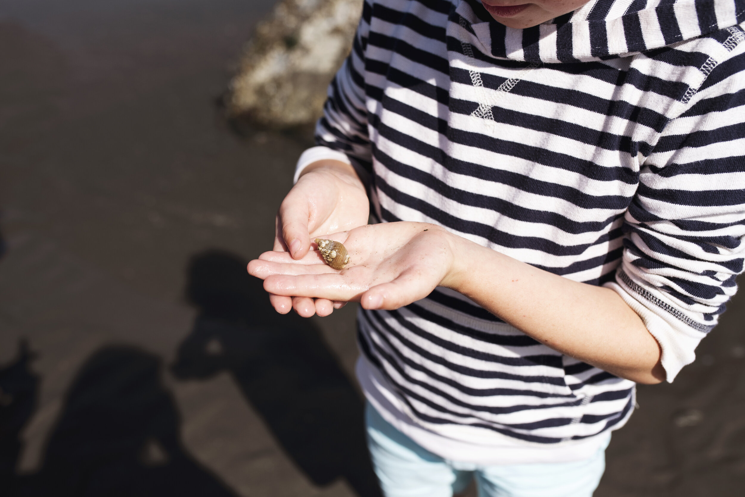 Edmonds family photographer boy holding shell at beach