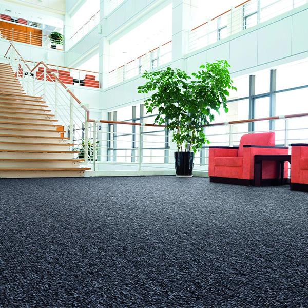Untitled-1_0001_carpet+tile.jpg