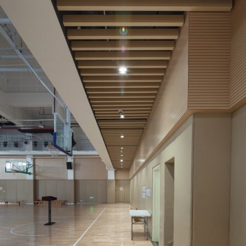 Woodn-Modulatus-Indoor-_6-500x500.jpg