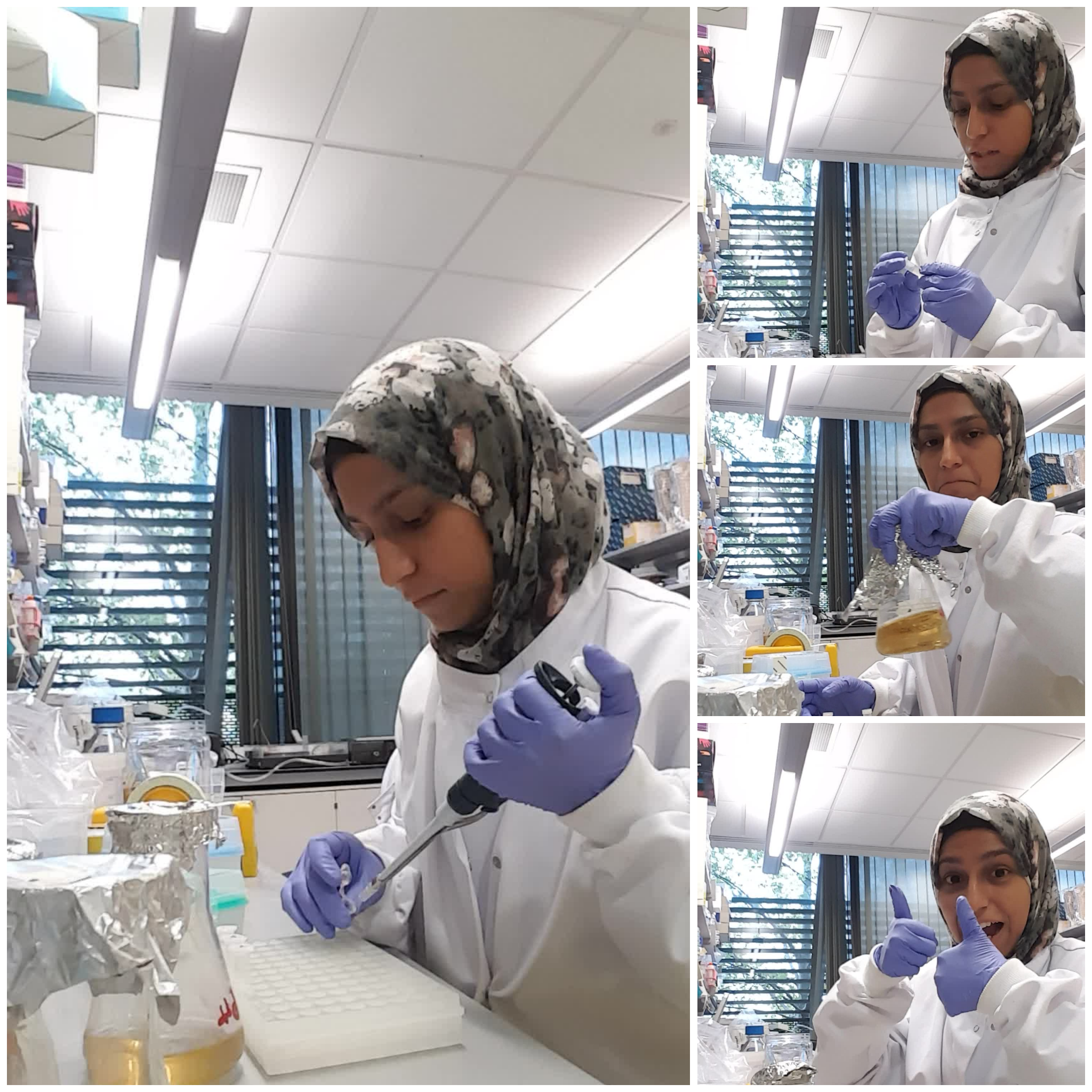 """This was the first time I was working in a lab during Ramadan and alhamdulillah found it much easier than anticipated. The key is to be open with your colleagues and supervisors about your needs. Most of them are incredibly supportive and understanding and even find it very inspiring that you go about your day without eating or drinking for 18 hours. Once you make the required adjustments, you can enjoy both science-ing and religion-ing."""