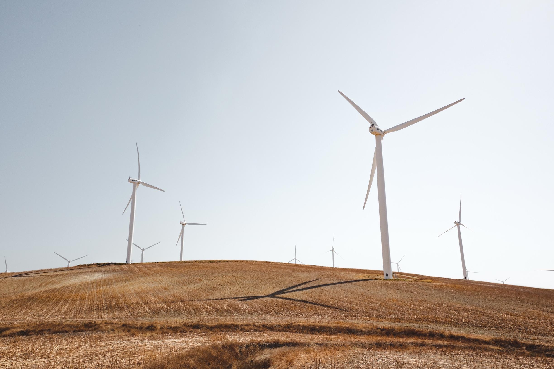 wheatwindfarm.jpg