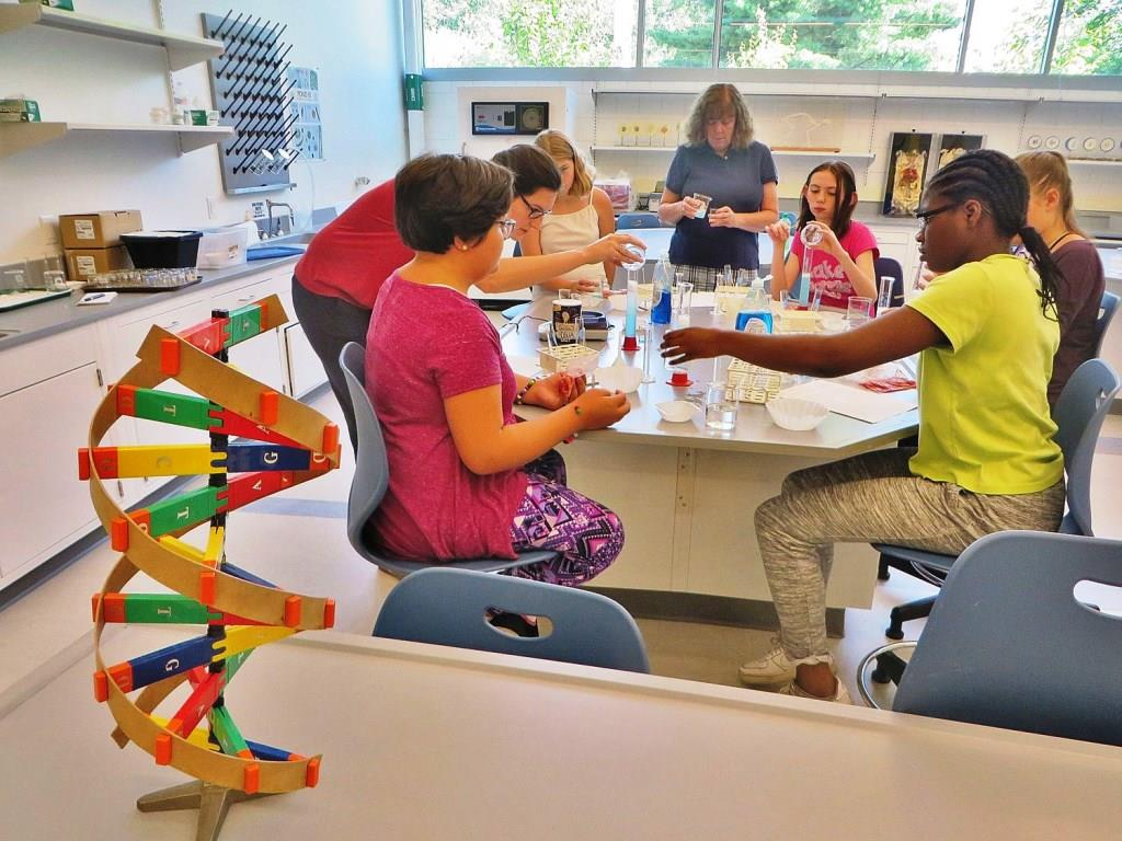 Creating Pathways through STEM