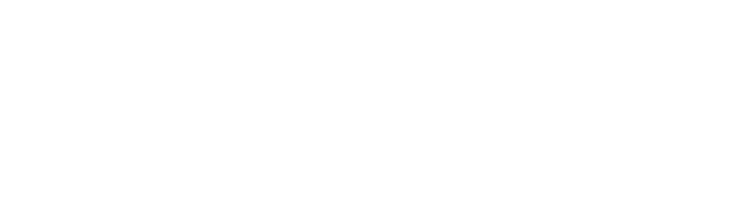 VIVA-6.png