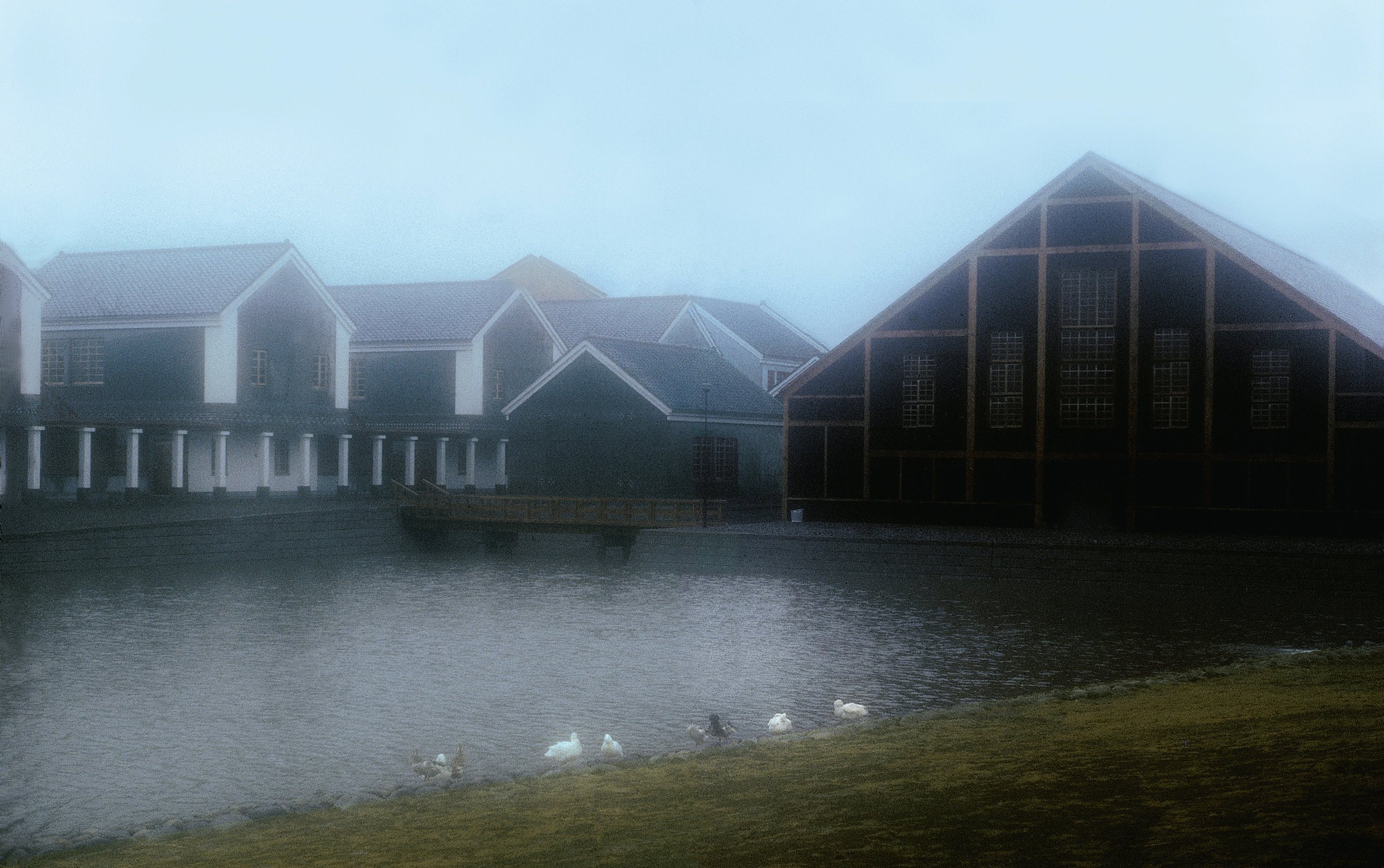 432-eishin_gym_lake_jeraldene-best_j_edit_cmyk_300_ppi-copy.jpg
