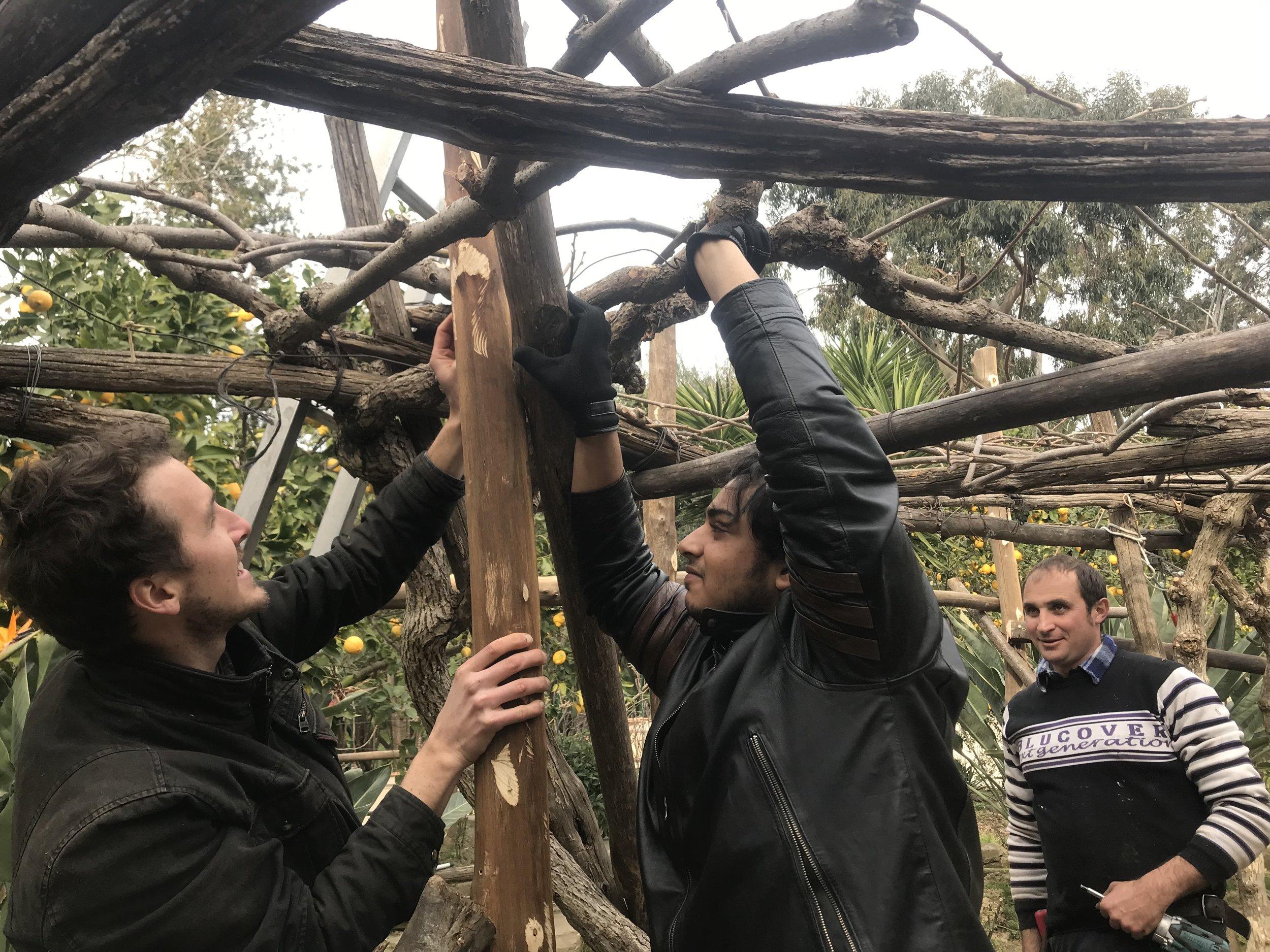 Building the pergola in the Sant'Anna garden.