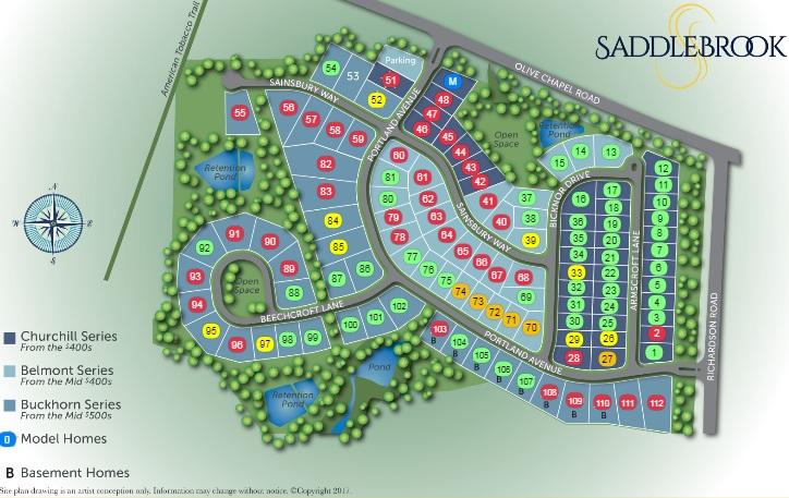 Saddlebrook_Apex.jpg