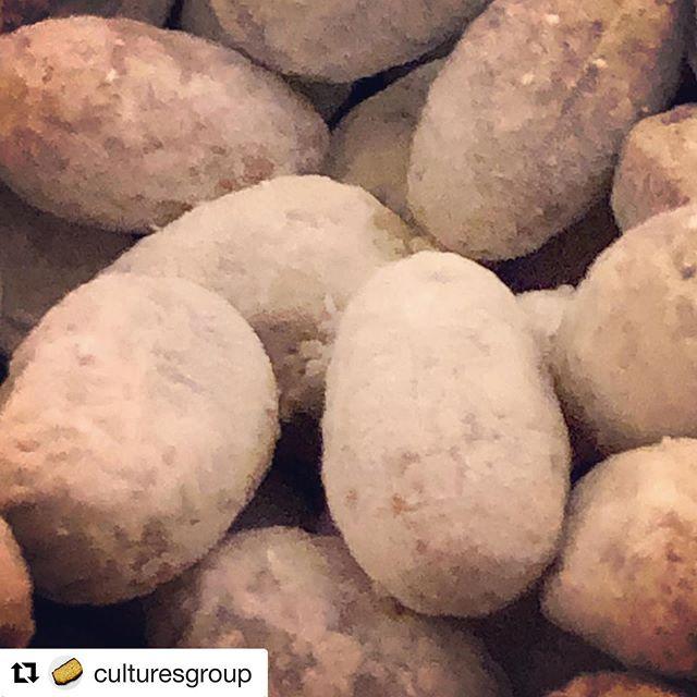 Miso-making and Miso-cooking demonstration this Saturday in East Village!  #Repost @culturesgroup with @get_repost ・・・ Flaky - but not greasy- legume koji. Which variety of #soybean do you think this is. There are 12 pretty common ones used in the US. So far down the rabbit hole of German carbohydrase (that's what they called it) and raffinose destroyer studies from the 70s and 80s getting crazy! EVENT Based on the demonstrations we'll have - if accessing the ingredients makes sense and preferably uses ugly vegetables, the following, all vegan, mostly gluten free items:  Menu: • Fried Garlic, Pickled Jalapeño, and Tomatillo Salsa • Szechuan Sauerkraut with pastrami flavored smoked hamma natto (koji based) • Shiitake Kombu Dashi Dama • Gohan Takikomi (recipe below) • Edamame Crispy Beans (glazed with a shio-koji plum mirin) • Jasmine Amasake (sweet, thick, koji based rice) • Miso Mayo Dip (miso, mayo with special seasonings, radishes) • Cucumber Misozuke (Cukes aged in a black pepper miso) • Spicy Ginger, Carrot, Garlic, and Onion Kimchi • Coriander Seed, Fennel and Lime Rind pickles • Toasted Almond KIsses (savory, nutty, sweet namemiso based) • Garlic Misozuke (Fresh garlic fermented in miso)  If you are a member of culturesgroup MeetUp https://www.meetup.com/culturesgroup/events/261196806/ , https://www.meetup.com/Evolving/ (Evolving lifestyles) or nycferments https://www.meetup.com/NYCFerments/ $20. Bring cash and pay there if you like. So please join the group and register for the event! Hope to see you there! koji@earthlink.net with questions!  #麹 (#koji) #甘酒 (amasake)#塩麹 (shio-koji  #味噌 (miso) #microbiome #chefkenfornataro  #kojifest2019 #aspergillusoryzae #糀 koji #麹漬け kojizuke  #mycobiome #五行 wood, fire, earth, metal and water  #濁酒 #vegancuisine #Vegan #plantbased #nutritionist #dietitian #cleaneating #heathyfood #japanesefood