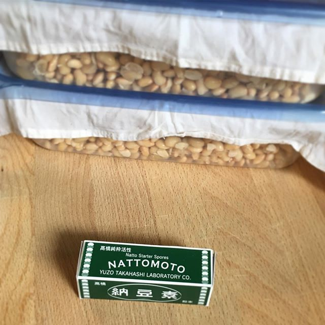 Happy Natto Day (July 10th)! . . . #fermentation #umami #natto #fermented #guthealth #cleaneating #healthyfood #foodismedicine #youarewhatyoueat #vegan #veganfood #vegetarian #plantbased #superfood #japanesefood #dietitian #nutritionist #納豆の日 #納豆