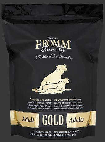 gold-dog-dry-adult.jpg