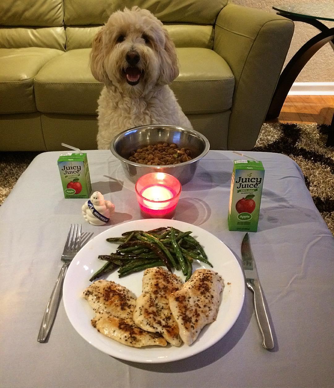 Wags to Wiskers Valentine's Day Ideas with your Dog