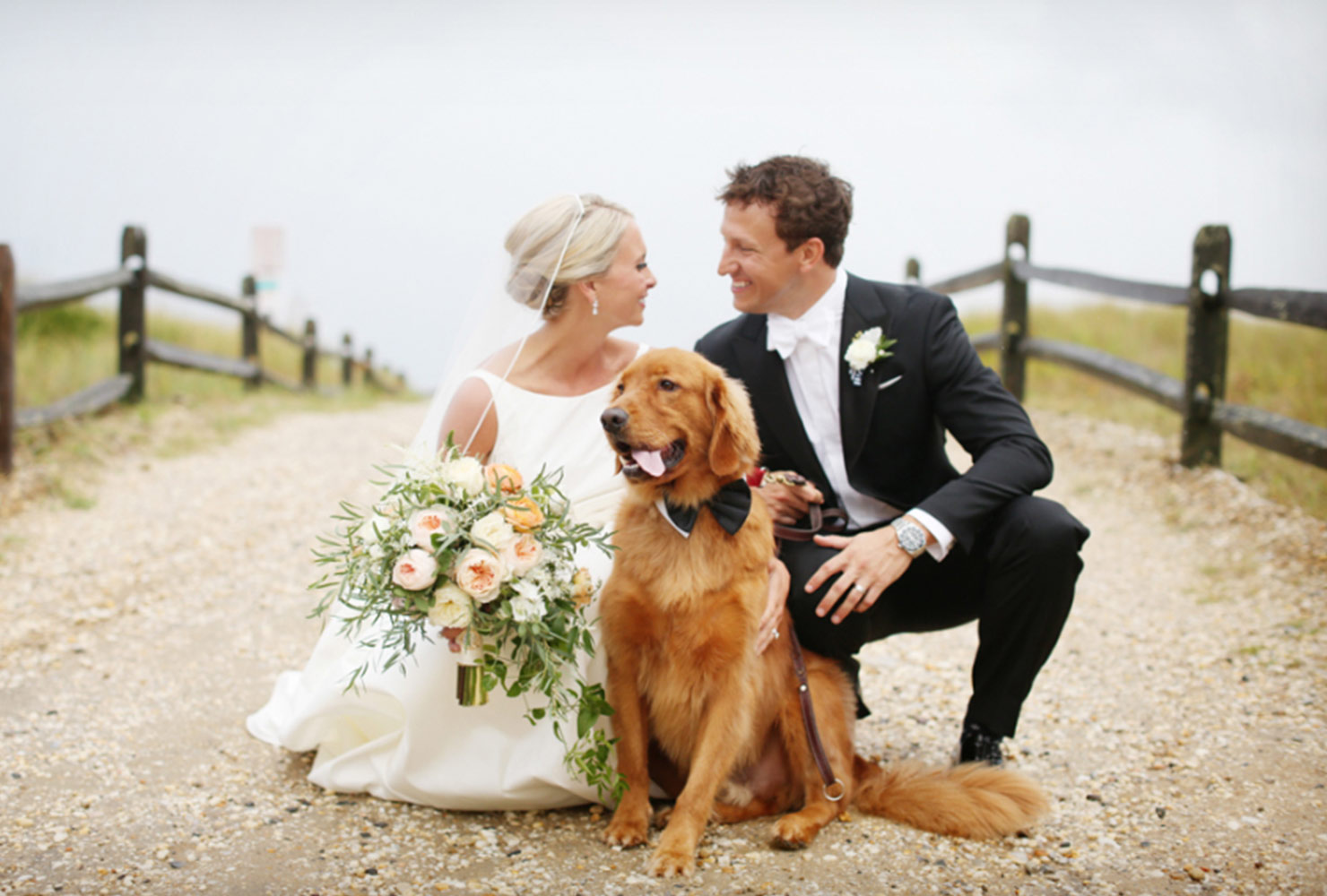 dogs-in-weddings-family-portrait.jpg