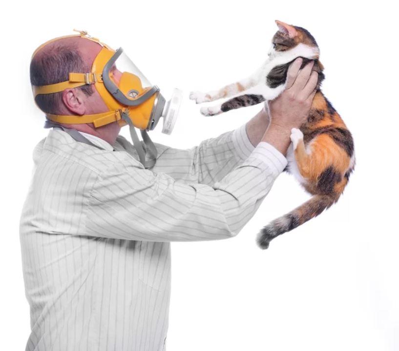 Cat allergies are no fun!